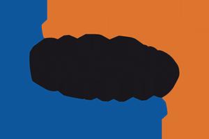 DLR PRO Logo